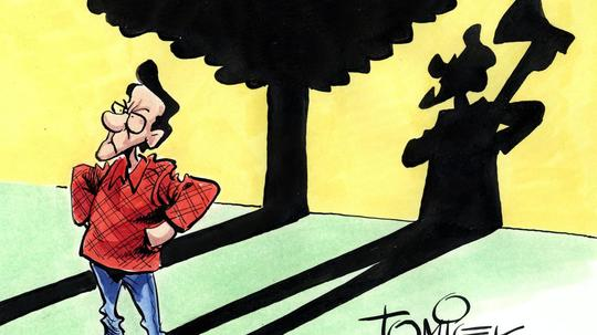 Wenn Nachbars Baume Schatten Werfen