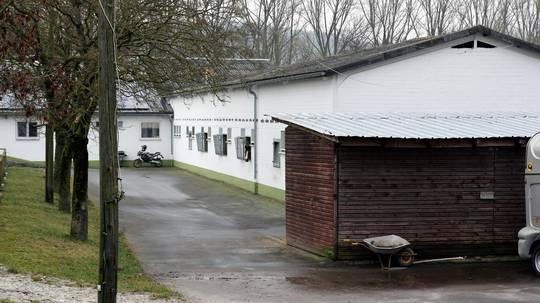 Streit Um Wohnungen über Dem Pferdestall
